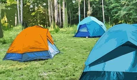 curso coordinador campamentos